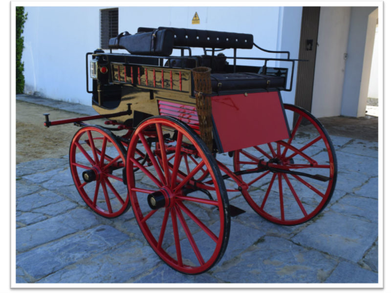 Dog-cart-1. Carruajes Romero