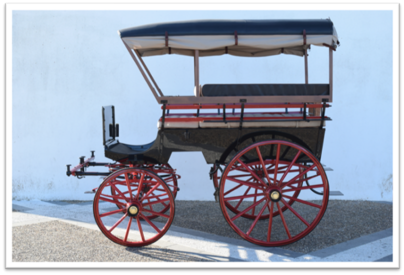 Restoration Wagonette with canopy 1