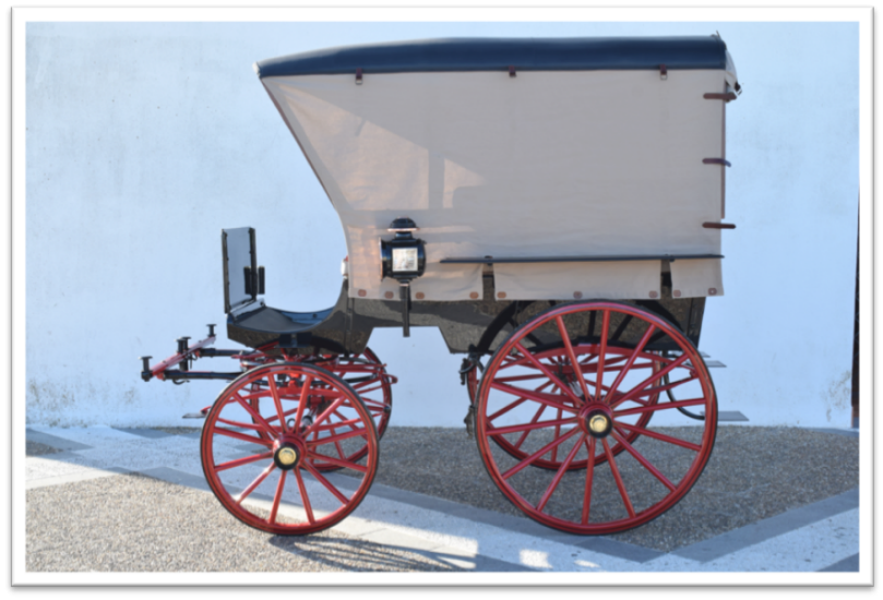 Restoration Wagonette with canopy 2