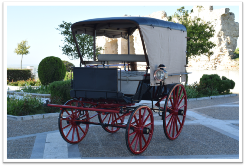 Restoration Wagonette with canopy 7