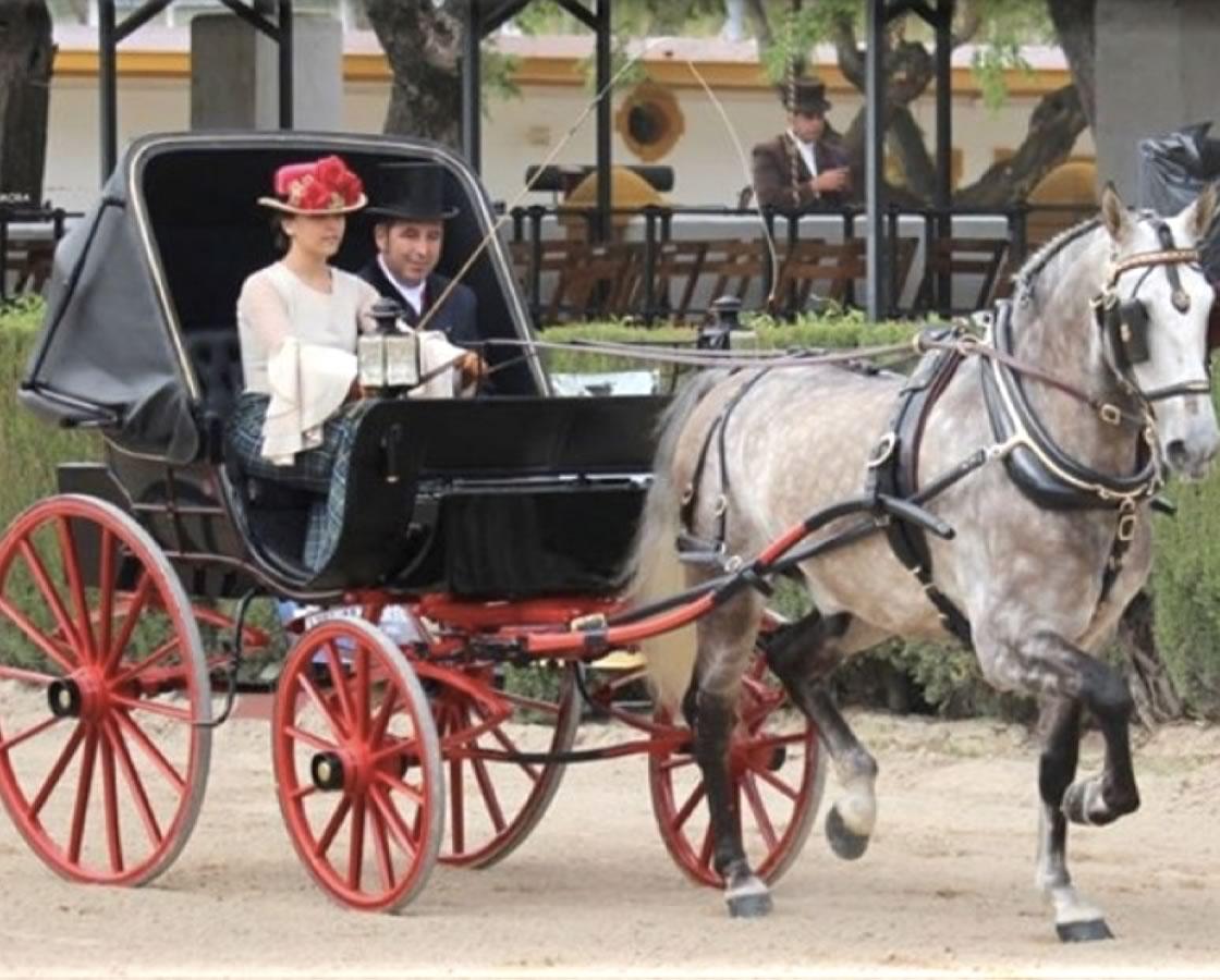 carruajes-romero-restauracion-ladys-phaeton-4