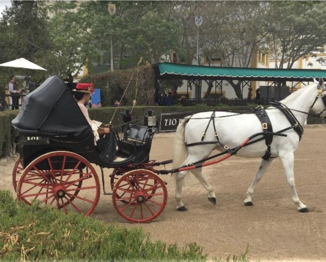 carruajes-romero-restauracion-ladys-phaeton-5