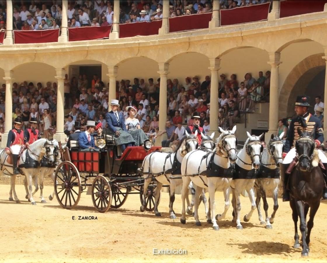 carruajes-romero-restauracion-break-posta-6